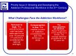 priority issue 2 growing and developing the addiction professional workforce in the 21 st century2