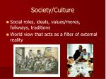 society culture1