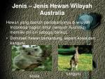 jenis jenis hewan wilayah australia