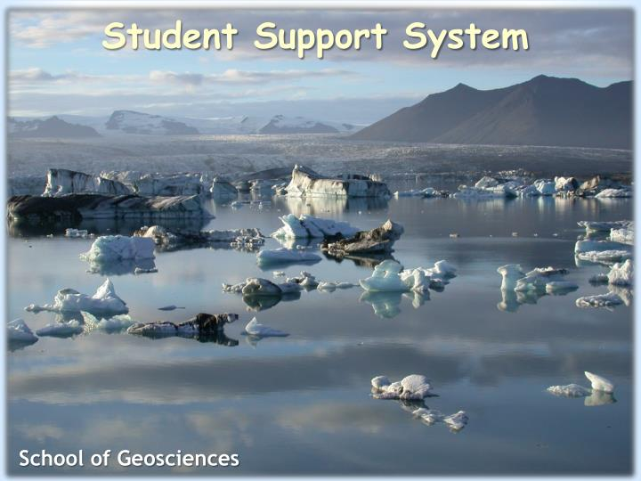student support system n.