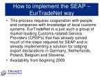 how to implement the seap eurtradenet way