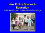 new policy spaces in education molly warrington university of cambridge