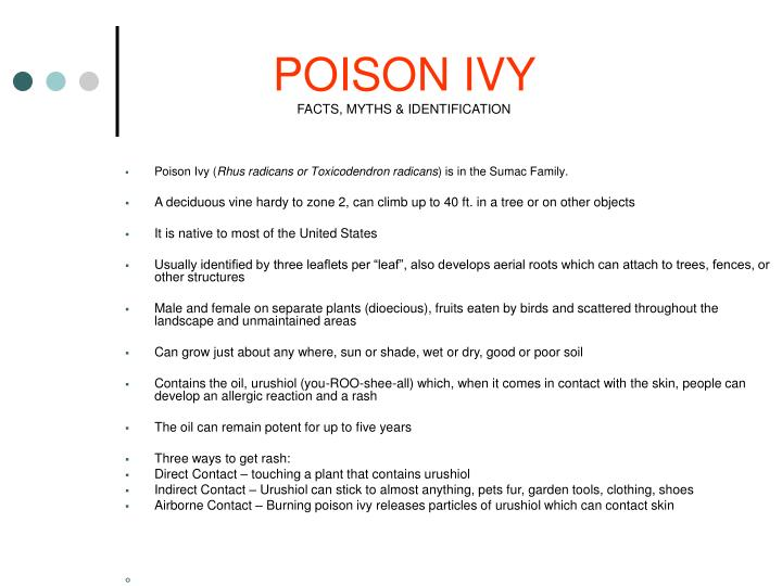 poison ivy facts myths identification n.