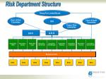 risk department structure