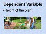 dependent variable1