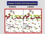 alanine calcite 214 interactions
