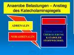 anaerobe belastungen anstieg des katecholaminspiegels