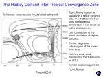 the hadley cell and inter tropical convergence zone