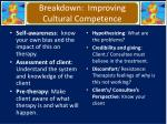 breakdown improving cultural competence
