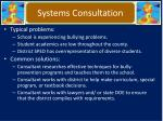systems consultation