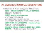 1 understand natural ecosystems
