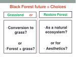 black forest future c hoices