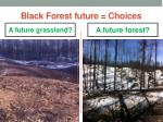 black forest future choices2