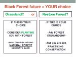 black forest future your c hoice