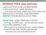burned tree area methods