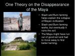 one theory on the disappearance of the maya