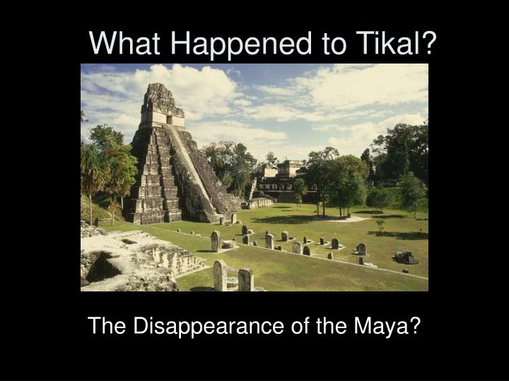 what happened to tikal n.