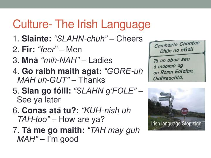 Culture the irish language