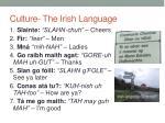 culture the irish language