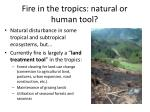 fire in the tropics natural or human tool