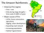 the amazon rainforests
