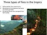 three types of fires in the tropics