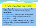 other cognitive processes