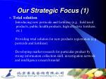 our strategic focus 1