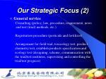 our strategic focus 2