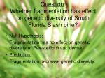 question whether fragmentation has effect on genetic diversity of south florida slash pine