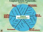 coupled systems frameworks rinaldi et al 2001