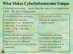 what makes cyberinfrastructure unique