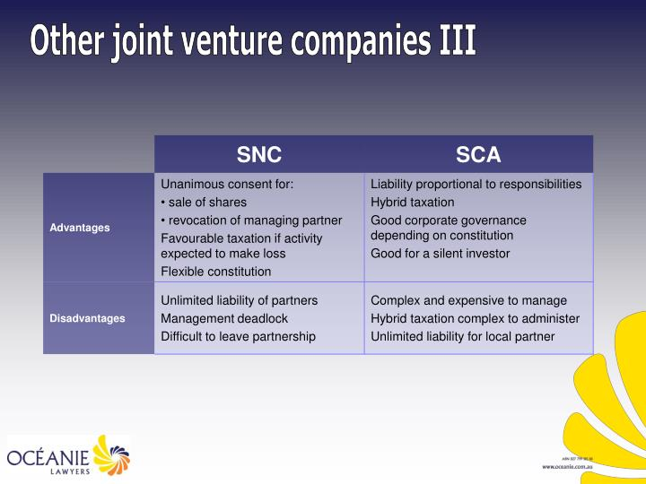 Other joint venture companies III