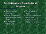institutional and organizational structure