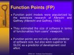function points fp