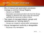 grouper overview