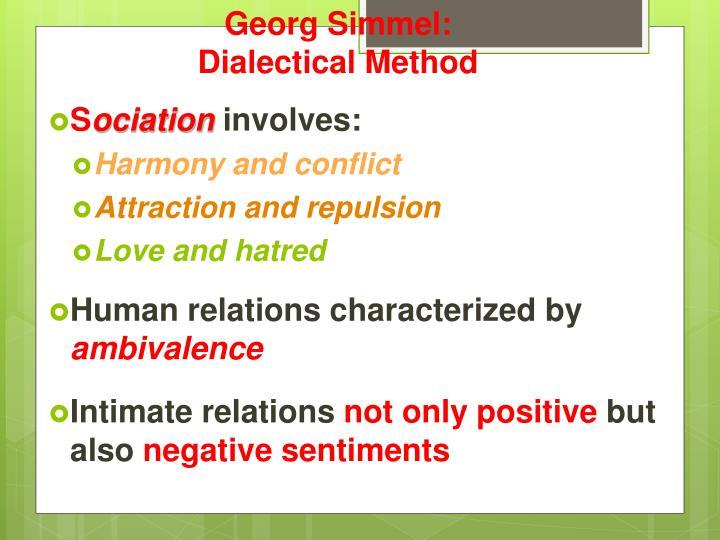 what did georg simmel seek to
