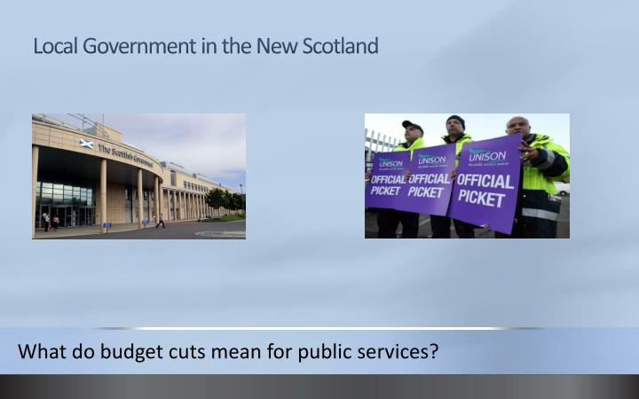 local government in the new scotland n.