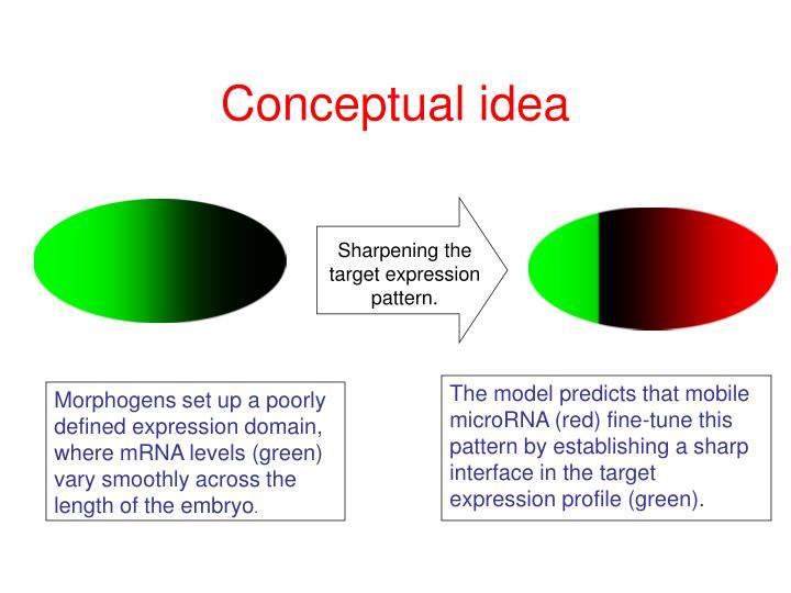Sharpening the target expression pattern.