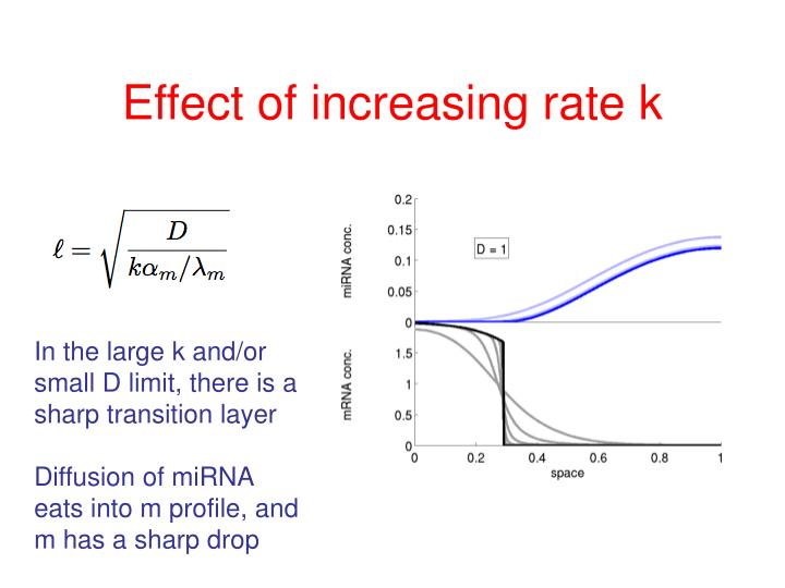 Effect of increasing rate k
