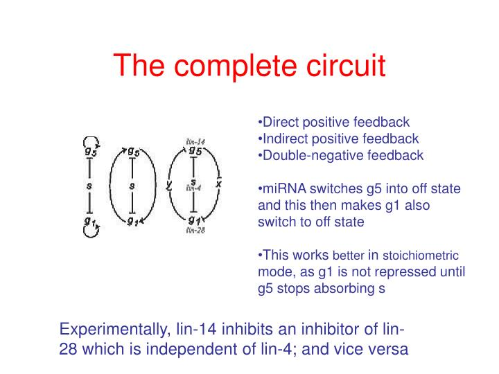 The complete circuit