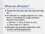 what are affricates