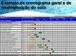 exemplo de cronograma geral e de recomposi o do solo2