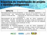 impactos da implanta o do projeto x medidas mitigadoras