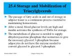 25 4 storage and mobilization of triacylglycerols
