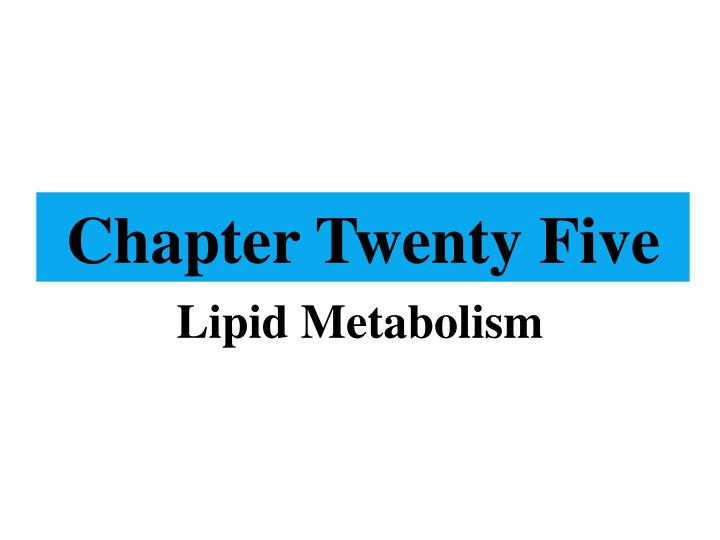 chapter twenty five n.