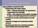 the audit committee1