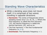 standing wave characteristics