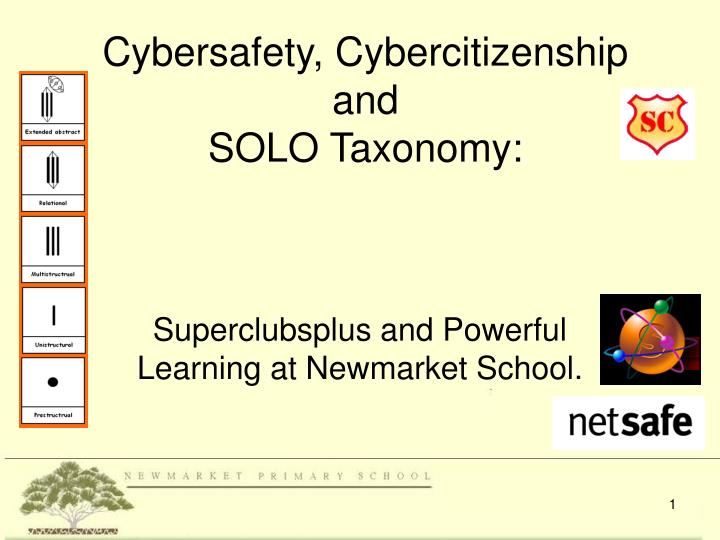 cybersafety cybercitizenship and solo taxonomy n.