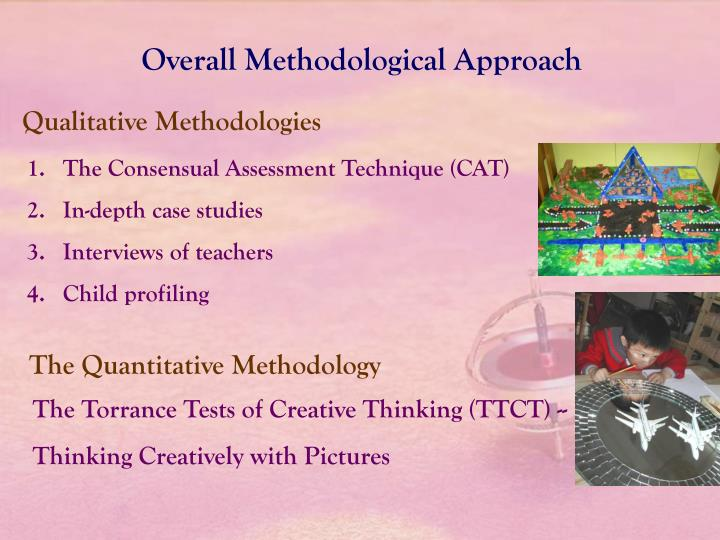 Overall Methodological Approach
